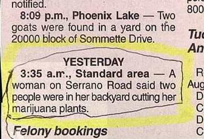 Planting Evidence is listed (or ranked) 4 on the list The Funniest Police Blotters Ever