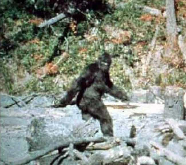 The Bluff Creek Bigfoot Was Ju... is listed (or ranked) 2 on the list Famous Hoax Photographs and How They Were Faked