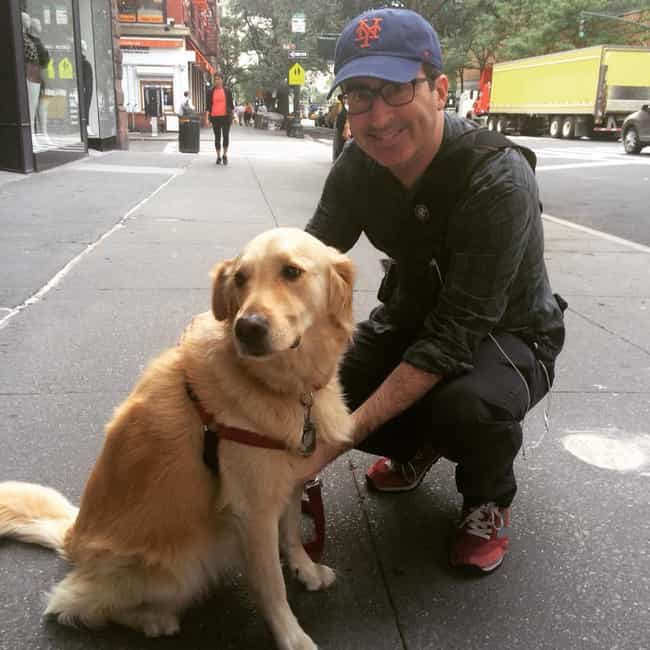 He Has a Dog Named Hoagie is listed (or ranked) 4 on the list Cool Facts You Might Not Have Known About John Oliver