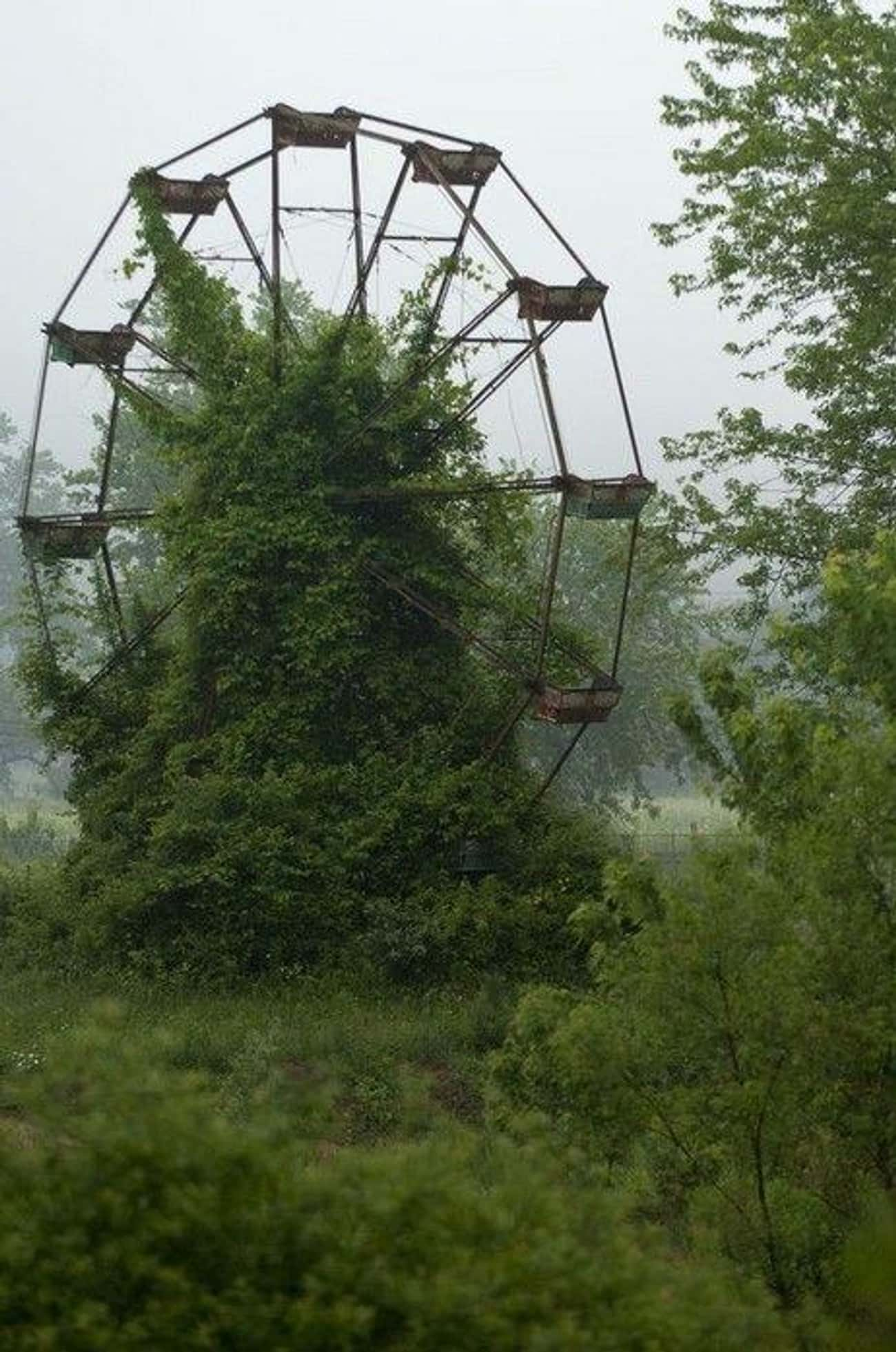 This Abandoned Ferris Wheel Is is listed (or ranked) 1 on the list Creepy Pictures of Abandoned Amusement Parks