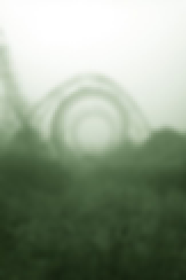 That Roller Coaster Was Probab... is listed (or ranked) 4 on the list Creepy Pictures of Abandoned Amusement Parks