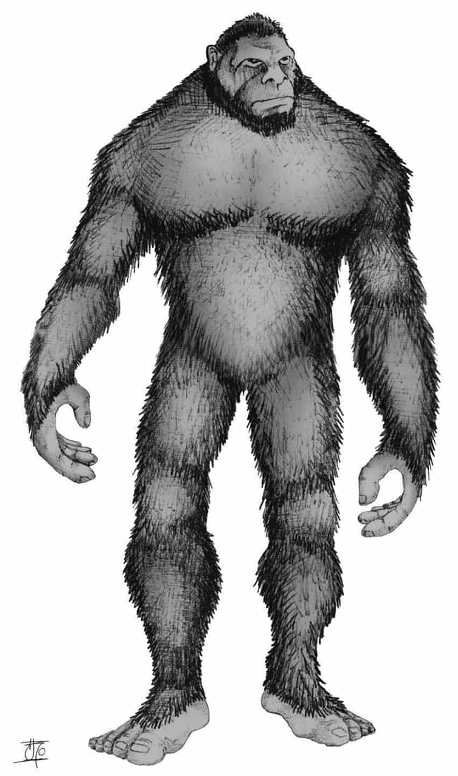 Mande Barung is listed (or ranked) 4 on the list These Are All The Bigfoots Around The World