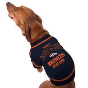 Pets First is listed (or ranked) 8 on the list The Best Pet Clothing Brands