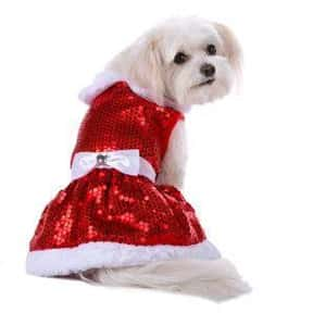 Top Paw is listed (or ranked) 22 on the list The Best Pet Clothing Brands