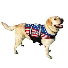Pawz is listed (or ranked) 7 on the list The Best Pet Clothing Brands