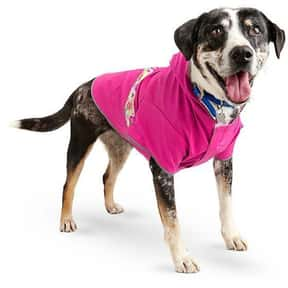 Good2Go is listed (or ranked) 1 on the list The Best Pet Clothing Brands
