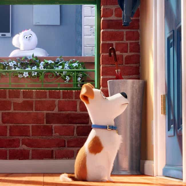 I Miss Her So Much is listed (or ranked) 1 on the list The Secret Life of Pets Movie Quotes
