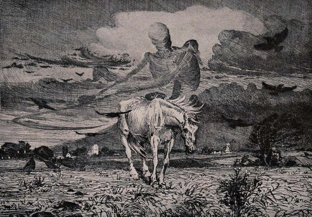'El Muerto' Of South Texas