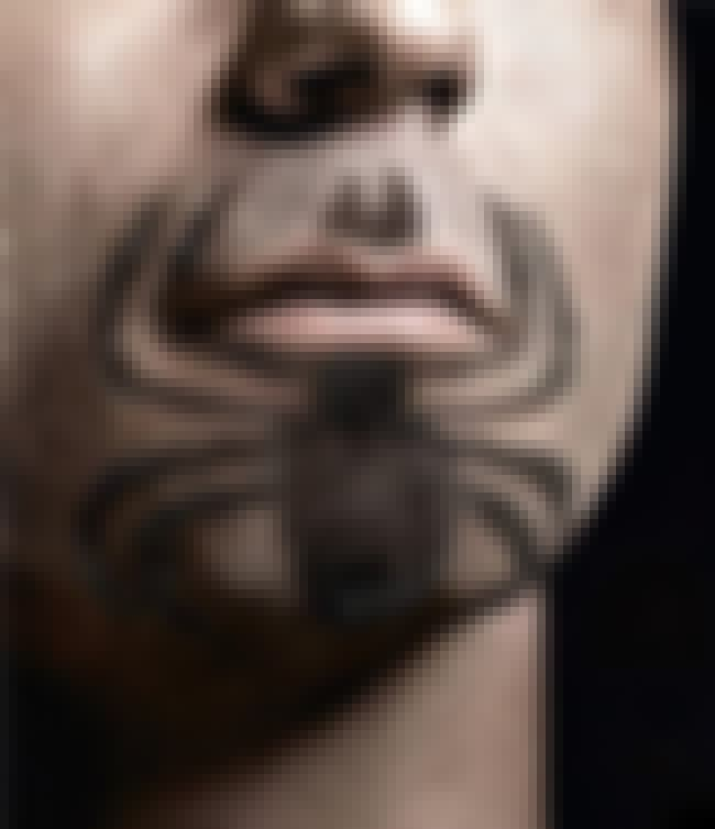 Spider-Stache is listed (or ranked) 3 on the list The Funniest Facial Hair Designs Ever
