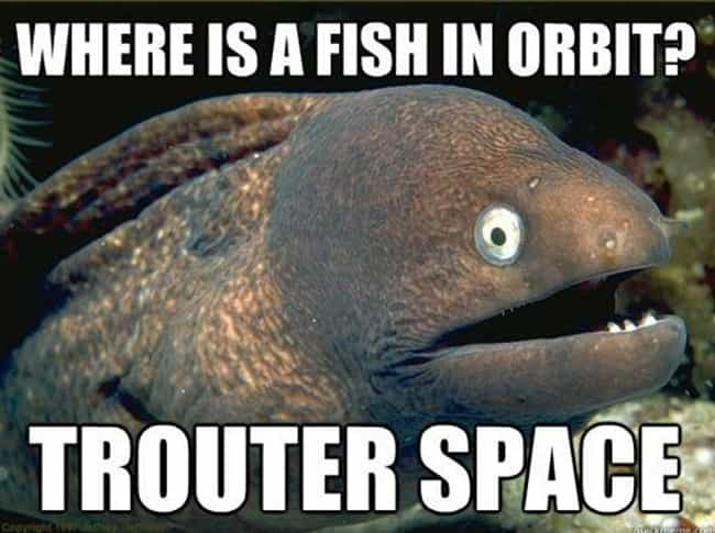 Trout of This World is listed (or ranked) 4 on the list The Absolute Funniest Fish Puns Ever