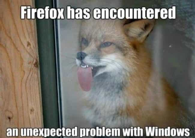 Oh for Fox Sake is listed (or ranked) 1 on the list The Absolute Funniest Animal Puns