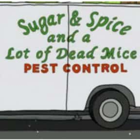 Sugar & Spice and a Lot of is listed (or ranked) 3 on the list Every Single Exterminator Van Pun on Bob's Burgers So Far