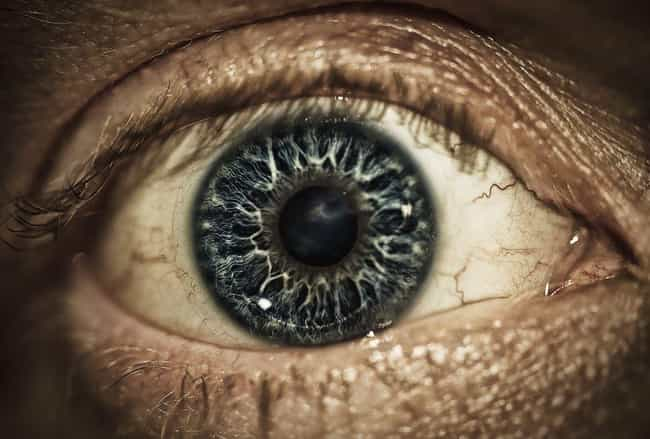 Your Eyes Might Explode is listed (or ranked) 2 on the list What Would Happen to Your Body If You Were Microwaved