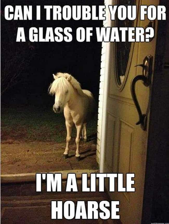 Sometimes It's the Littl... is listed (or ranked) 2 on the list The Funniest Horse Puns in the Barn