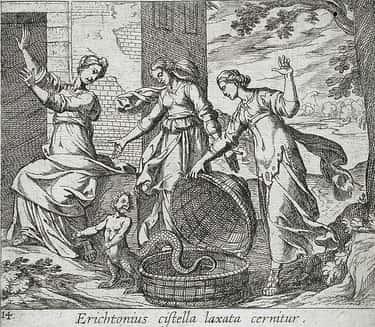 Erichthonius