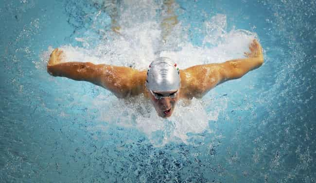 He Holds Two Commonwealth Game... is listed (or ranked) 1 on the list Top Chad Le Clos Facts You Should Know: Family, Wins, and More