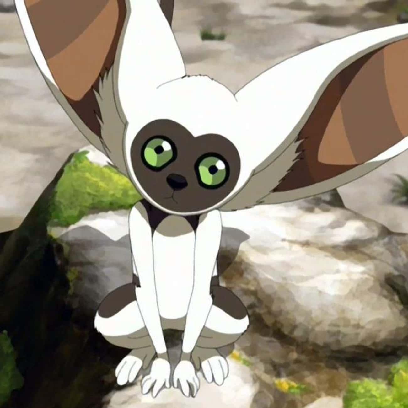Momo Is an Incarnation of Aye-Aye, the Lemur Spirit