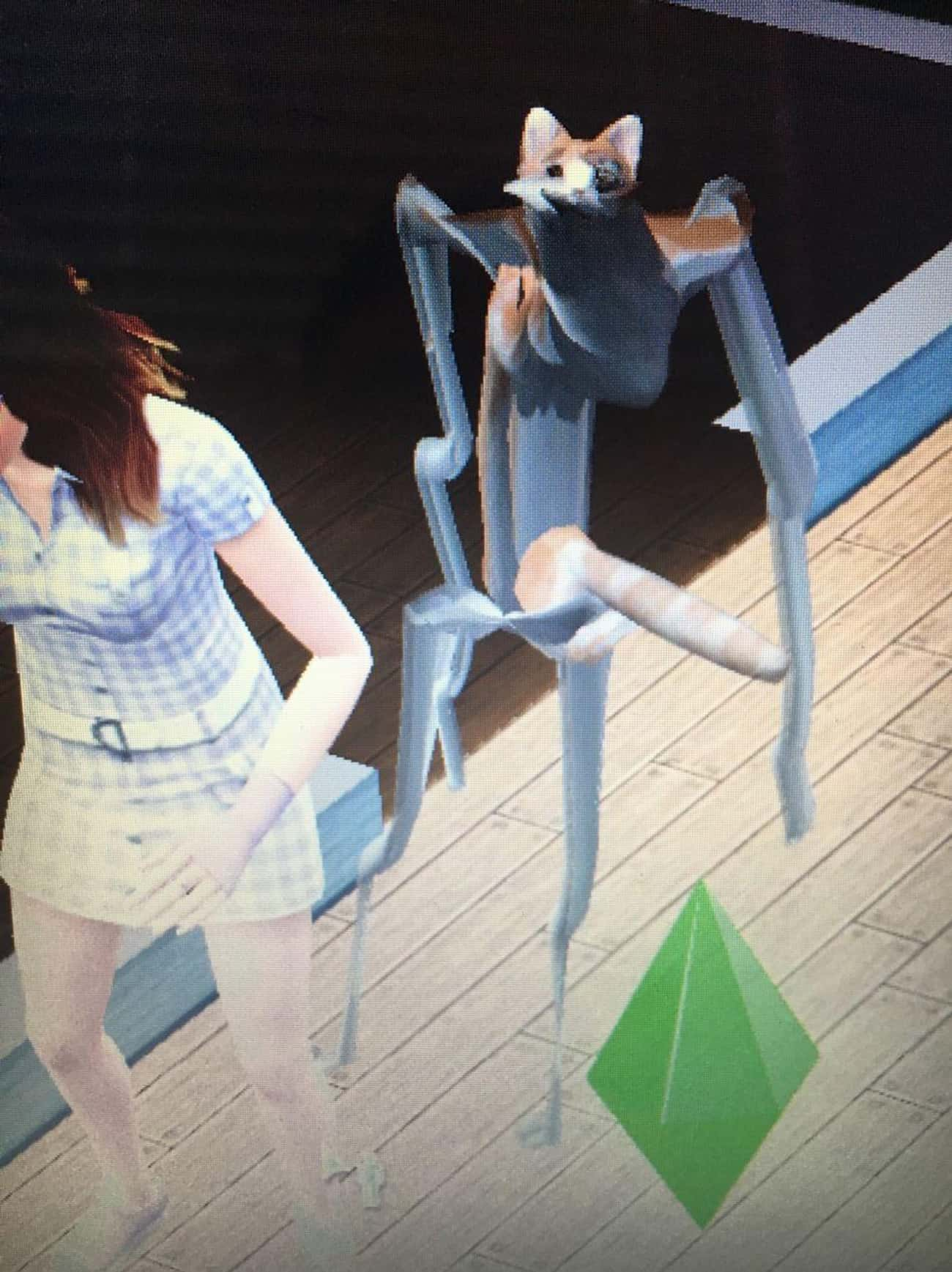 Behold! CAT TENT! is listed (or ranked) 2 on the list These Glitches From The Sims Prove That Reality Is An Endless Sea Of Madness
