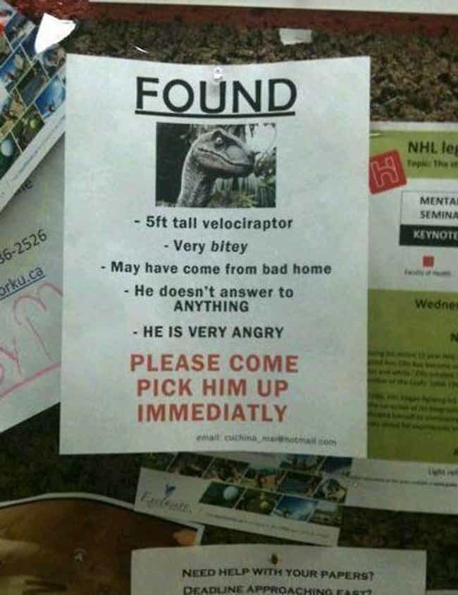 Clever Girl is listed (or ranked) 8 on the list 22 Hilarious Fliers Found on College Campuses
