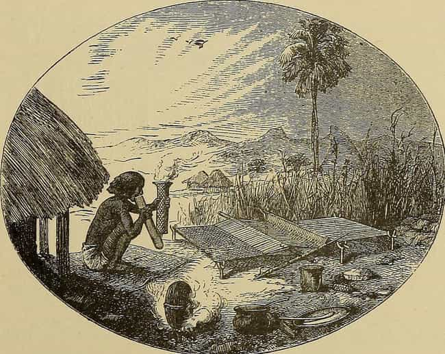 Bushongo: A Lonely God Puked t... is listed (or ranked) 1 on the list The Weirdest Creation Myths from Religions Around the World