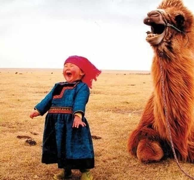 Who Let the Camels Out!? is listed (or ranked) 2 on the list People Who Are Clearly Having the Best Day Ever