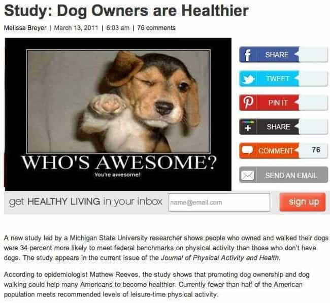 """Who's Your Doggy? is listed (or ranked) 4 on the list 20 Ridiculous """"A New Study Shows"""" News Headlines"""