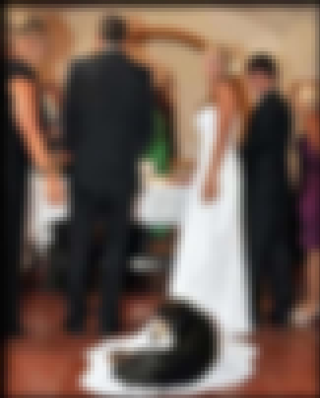 This Dog, Who Found the Perfec... is listed (or ranked) 4 on the list These Photos of Animals at Weddings Are Just Delightful