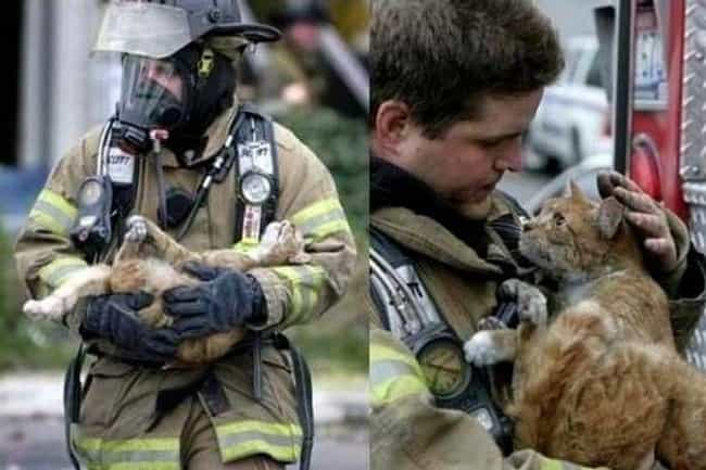 Iz Love You is listed (or ranked) 1 on the list 22 Fireman Photos That Are So Hot Right Now