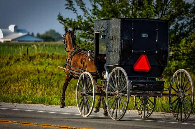 Even the Amish Like to H... is listed (or ranked) 6 on the list Surprising Rumspringa Facts That Will Change Your Mind About The Amish Tradition Of Rumspringa