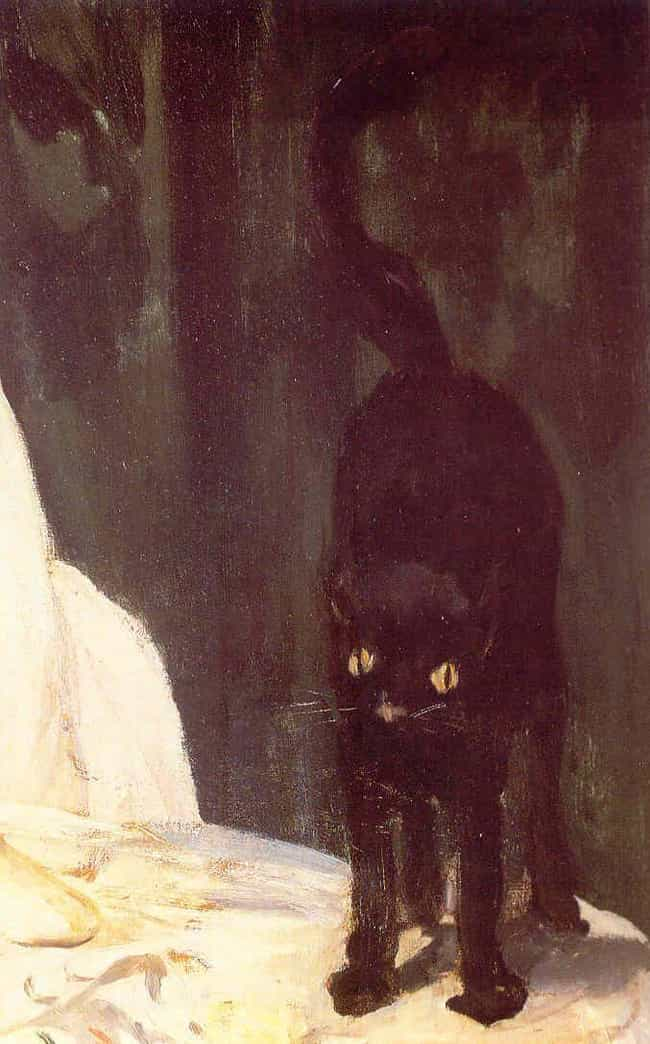 Demon Cat of the Capitol is listed (or ranked) 2 on the list 10 Pets Who Returned as Ghosts to Help or Haunt Their Owners