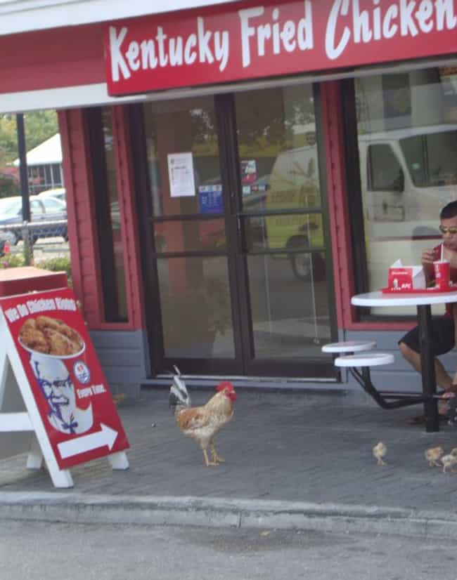 Chicken Run! is listed (or ranked) 2 on the list The 24 Greatest Moments in KFC History