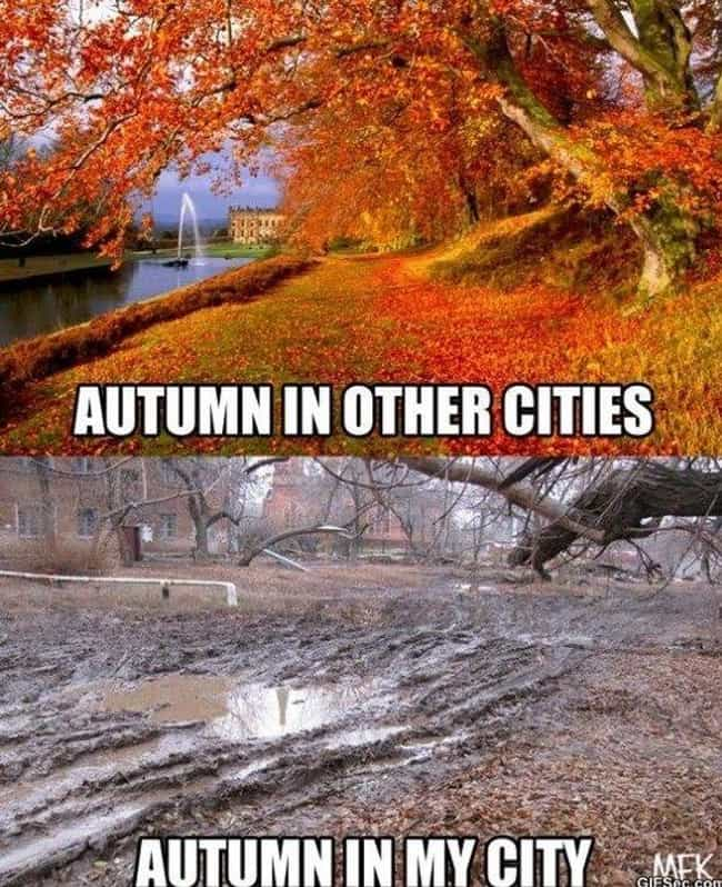 Expectation vs Reality is listed (or ranked) 5 on the list 22 Memes To Get You Ready For Fall
