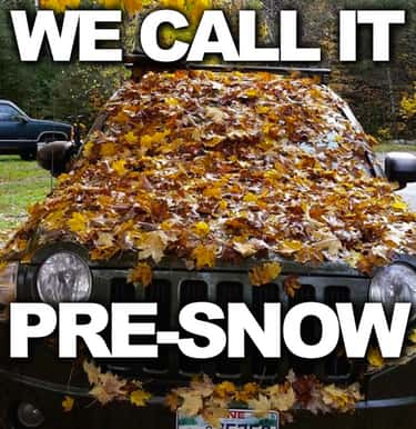Fall Memes to Get You Ready for the Season