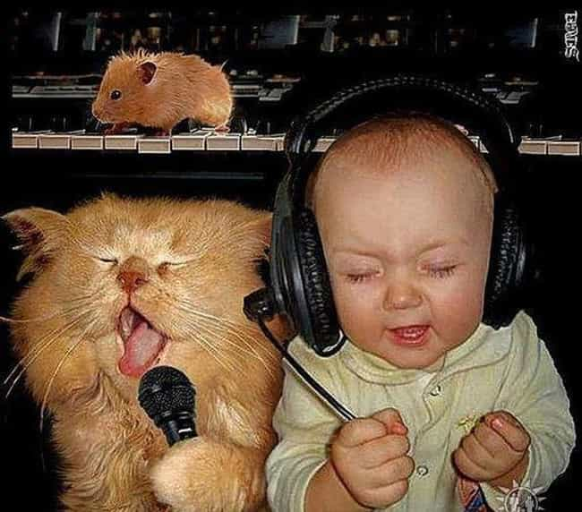 Cat Scratch Fever! is listed (or ranked) 3 on the list 20 Photos of Babies with Cats That You Won't Be Able to Resist