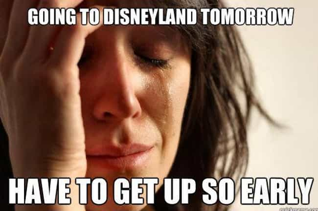 The Early Bird Gets the Mouse is listed (or ranked) 1 on the list 25 Memes That Pretty Much Sum Up Every Trip to Disneyland