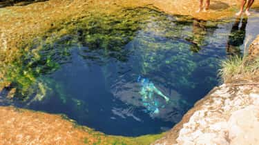 At Least Eight Divers Have Perished in Jacob's Well Due to False Exits and Blinding Silt