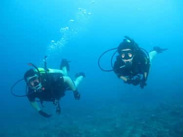A Diver Spends 10 Hours in Darkness with His Dead Friend More Than 900 Feet Under Water
