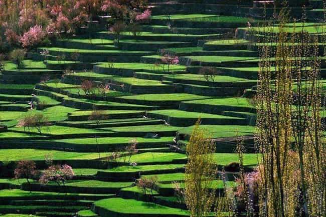 The Hunza Terraces of Pakistan is listed (or ranked) 3 on the list Beautiful Patterned Landscapes That Almost Don't Look Real
