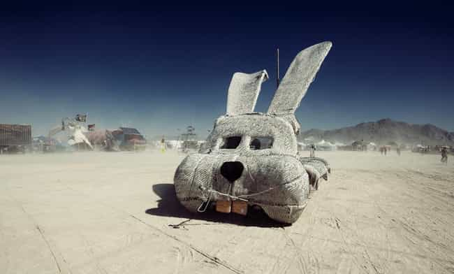 Kill As Many Rabbits As You Wa... is listed (or ranked) 1 on the list The Strangest Rules You Didn't Know People At Burning Man Have To Follow