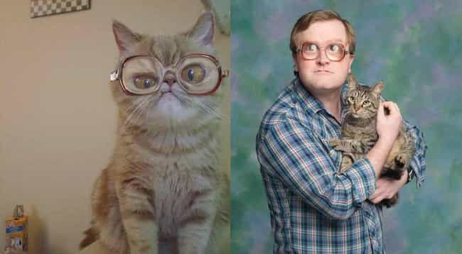 Bubbles Cat is listed (or ranked) 1 on the list Cats Who Look Like Famous TV Characters