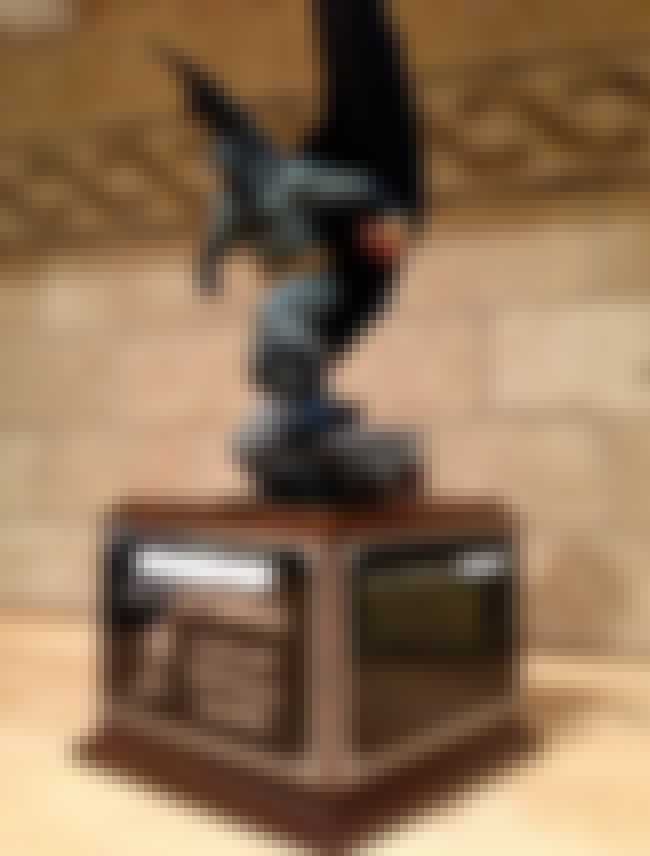 The Fantasy Knight Rises is listed (or ranked) 3 on the list The Funniest Fantasy Football Trophies Ever Made
