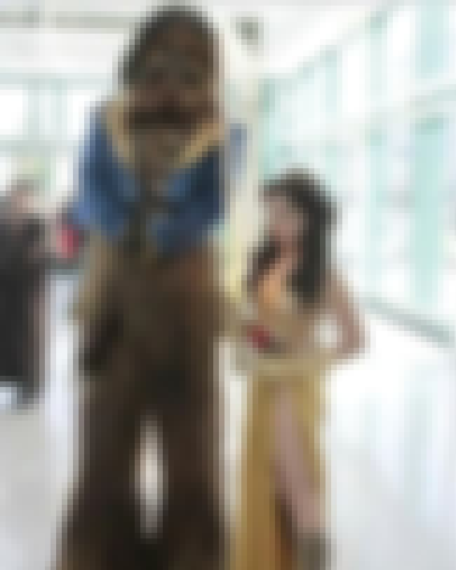 Wookie and the Beast is listed (or ranked) 2 on the list 30 Awesome Examples of Cosplay with a Twist