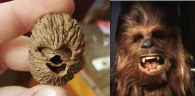 This Walnut That Looks J... is listed (or ranked) 2 on the list Foods That Weirdly Look Like Beloved Fictional Characters