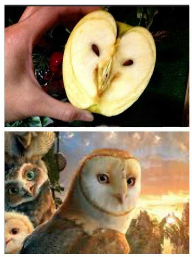 This Apple That Looks Li... is listed (or ranked) 1 on the list Foods That Weirdly Look Like Beloved Fictional Characters