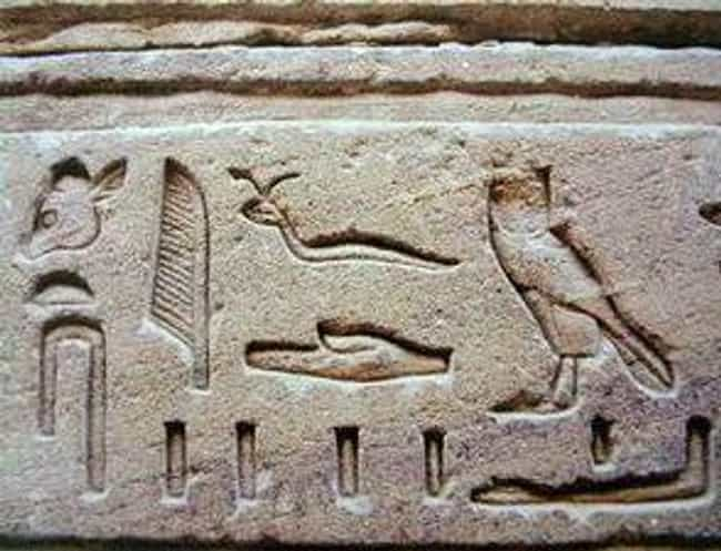 Afterlife Genital Extensions F... is listed (or ranked) 1 on the list Strange Things Ancient Egyptians Actually Used for Sexual Pleasure