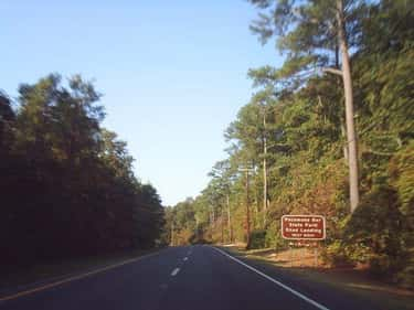 A Girl Waiting for Her Boyfrie is listed (or ranked) 1 on the list 14 Myths and Legends Surrounding Maryland's Haunted Pocomoke Forest