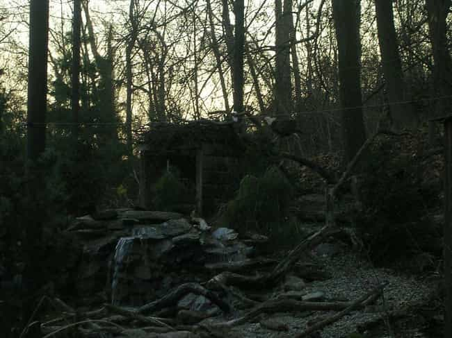 The Ghosts of Slaves and Their... is listed (or ranked) 4 on the list 14 Myths and Legends Surrounding Maryland's Haunted Pocomoke Forest