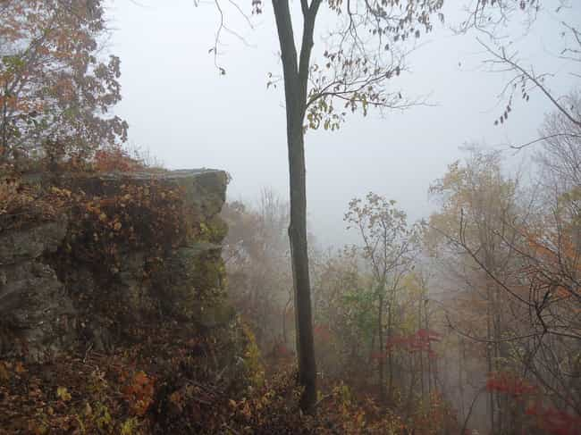 Freetown State Forest, Massach... is listed (or ranked) 3 on the list 12 Super Haunted Forests You Never Want To Get Lost In