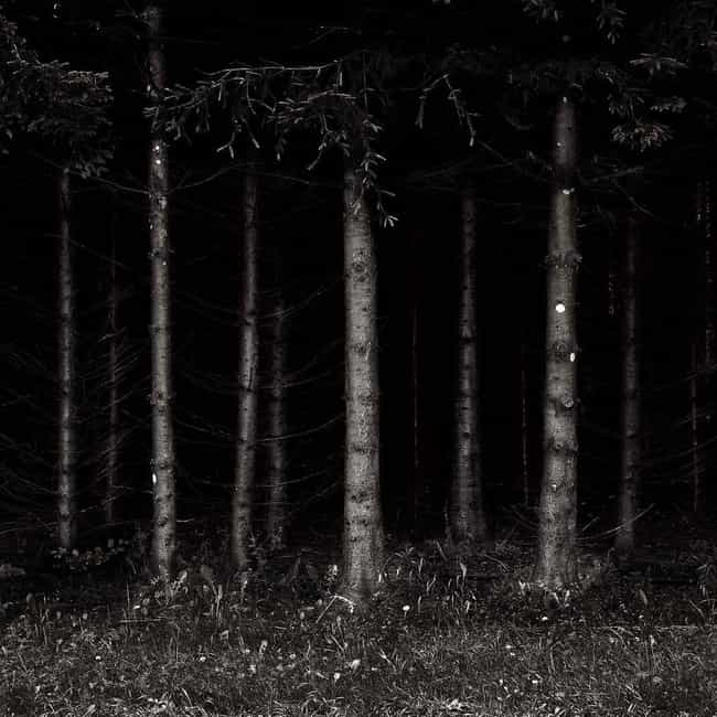 The Black Forest, Germany is listed (or ranked) 2 on the list 12 Super Haunted Forests You Never Want To Get Lost In