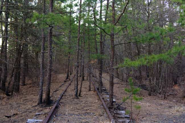Pine Barrens, New Jersey... is listed (or ranked) 4 on the list 12 Super Haunted Forests You Never Want To Get Lost In
